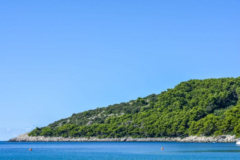 The Mljet Island / This a half green national park, which you should visit!