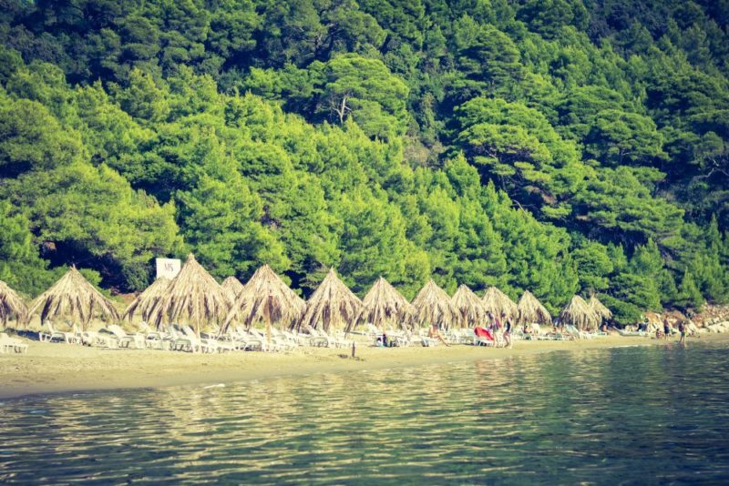 Saplunara sand beach in Croatia / A view from the sea on the entire island which is beautifully located in a forest.