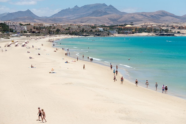 Prices of food, cigarettes and alcohol in stores as well as meals in restaurants in Fuertaventura