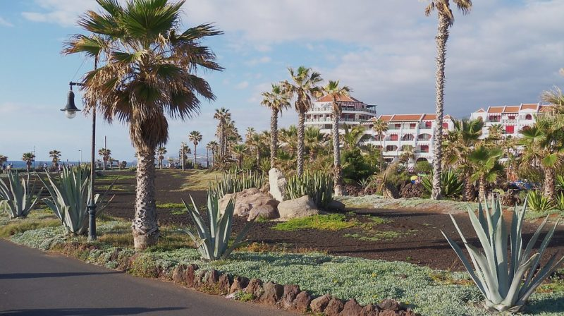 Accommodation prices in Tenerife in hotels, motels and hostels.