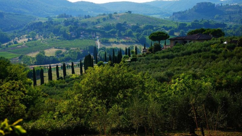 A guide to Tuscany / Visit Tuscany knowingly choosing the most important and best attractions and sights!