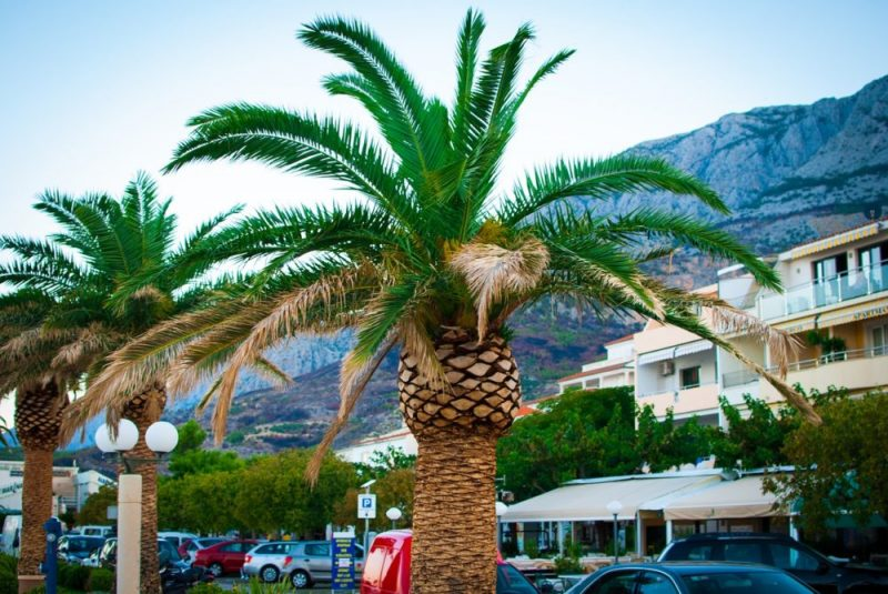 Tourist attractions and monuments of the Makarska Riviera / See what to see and visit while on the Makarska Riviera?