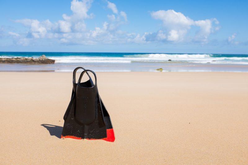 Optional trip in Fuerteventura
