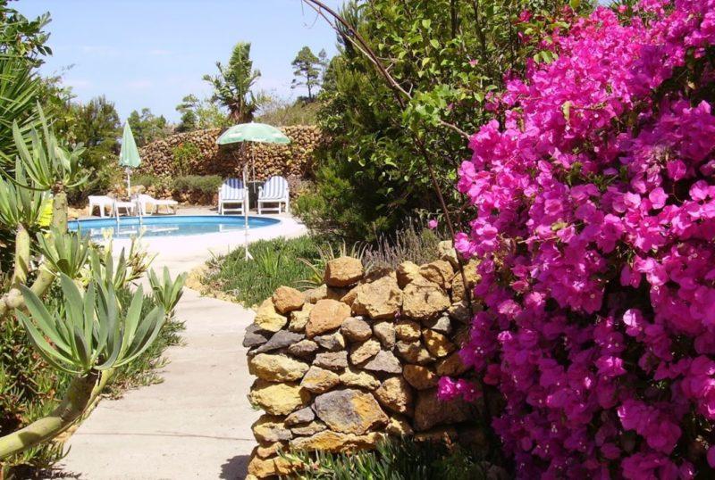 Tenerife and optional trips